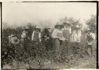 Young women picking fruit in Sharon Springs, New York