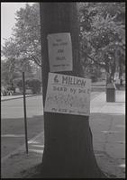 """""""Six million dead by Dec?"""" sign attached to a tree near a Relief for Biafra stand, American University, 05 October 1968"""