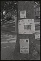 """""""One can saves a life"""" sign attached to a tree near a Relief for Biafra stand, American University, 05 October 1968"""