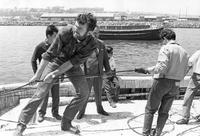 Peace Corps Volunteer Peter Wadsworth pulling in fishing nets with fishing cooperative members, San Antonio, Chile
