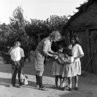 Peace Corps Volunteer Lynne Alper and Mapuche children holding a kitten on the Reducción Quetrahué, Chile